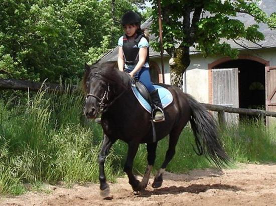 Les enfants et les poneys